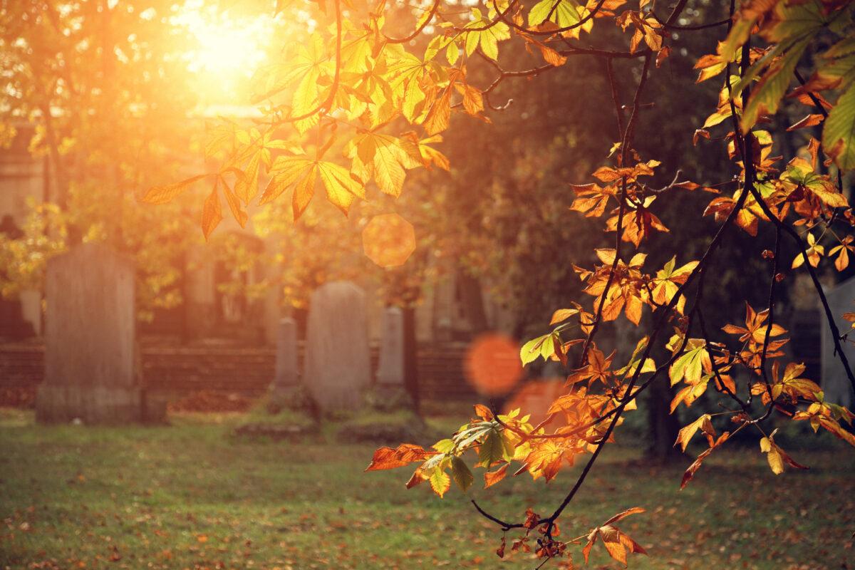 les tombes les plus visitées