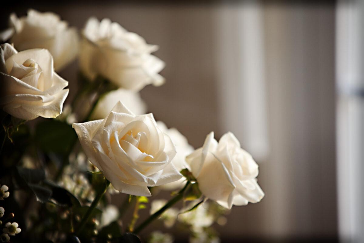 Quel est le coût des funérailles ?