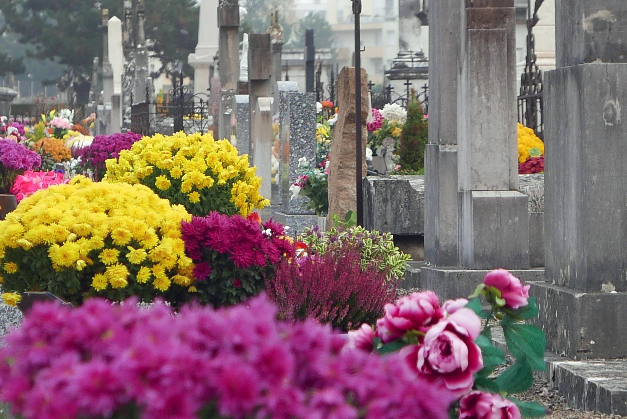 fleurir une tombe à la toussaint